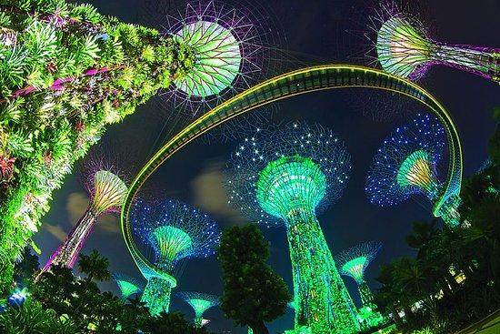 Singapur bei Nacht: Musik- und...