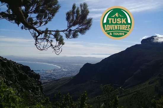 Tusk Adventures & Tours