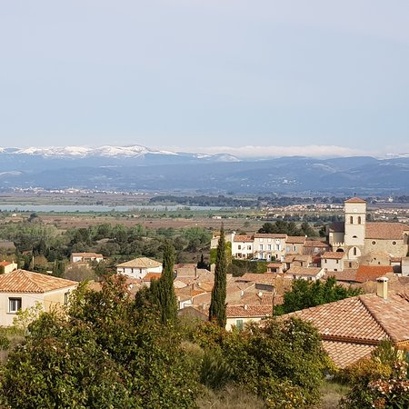 Tourouzelle is a small, quiet ville, in the #southoffrance #aude, only 2km from the #canaldumidi. 2km from #homps,  5km from #olonzac and only 35 minutes from the #mediterranean sea. (20 mins from Carcassonne and Narbonne.) Great place to #walk #cycle #fish #sketch #photograph and #birdwatch. The village has two shops and a café/bar that does pizza on Wednesday evenings.