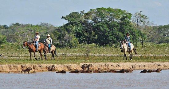 Trinidad, Колумбия: Muy cerca de Yopal Casanare existe un lugar encantador que puedes visitar en cualquier época del año , donde puedes realizar actividades de safari llanero , montando a caballo, conociendo tradiciones y costumbres llaneras y viviendo experiencias inolvidables.