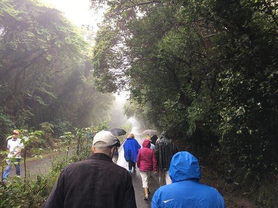 Coronado, Costa Rica: A walk to Poas Volcano Main Crater