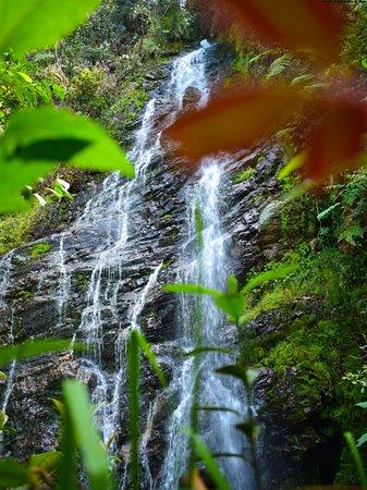 Antioquia Department, Colombia: Cascadas Las Golondrinas