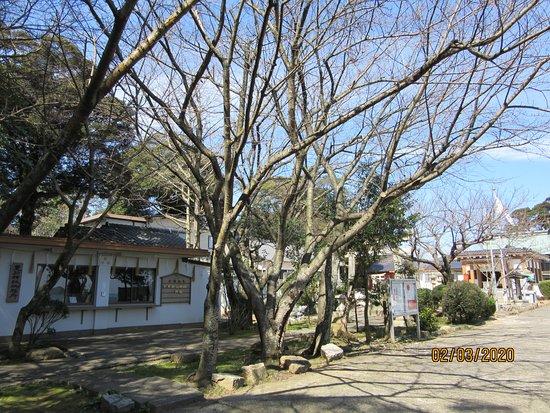 Toyokoto Shrine