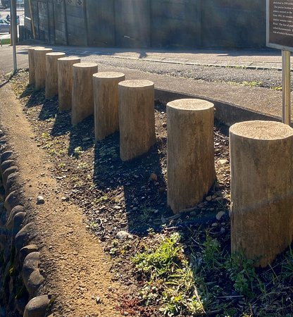 Kasuminoseki Minami Kido Fence Site
