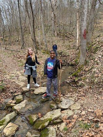 Hiking the Overlook Loop