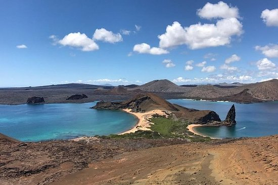 Bartolomé Island Tour