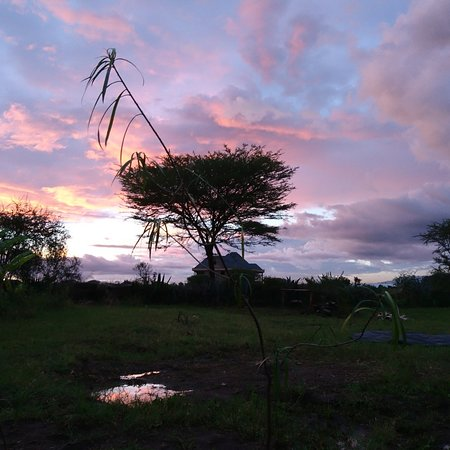 Sunset in Tarangire national park in Northern Tanzania trip from Acacia trees to baobab trees