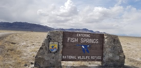 Dugway, UT: Fish Springs National Wildlife Refuge