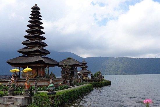 私人游览:您的计划亮点之旅(10小时使用时间)Bali Driver