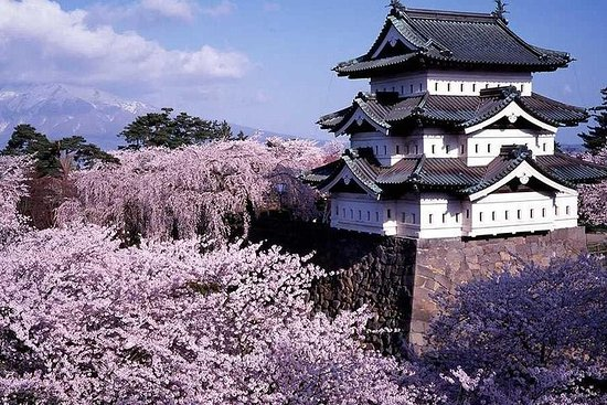 Hirosaki Full-Day Private Tour with...