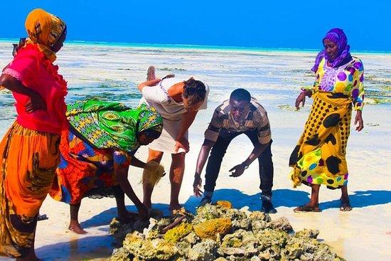 Jambiani Frauenwanderung - Wanawake...