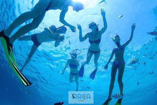 Phi Phi Snorkling / Adventure...