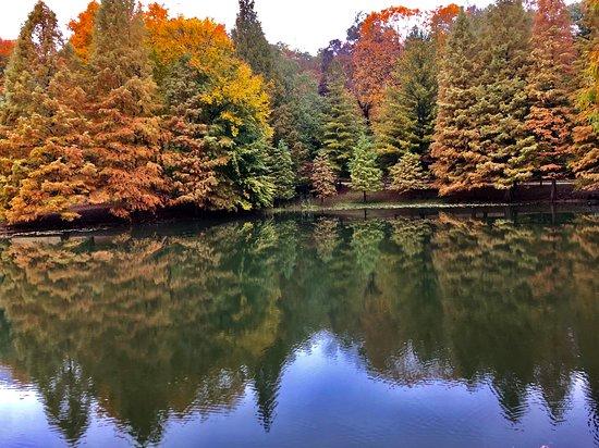 Derby, IN: Lake