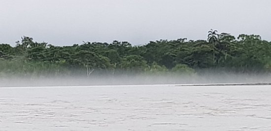 Ahuano, Эквадор: Napo river early in the morning, an espectacular view of the jungle.