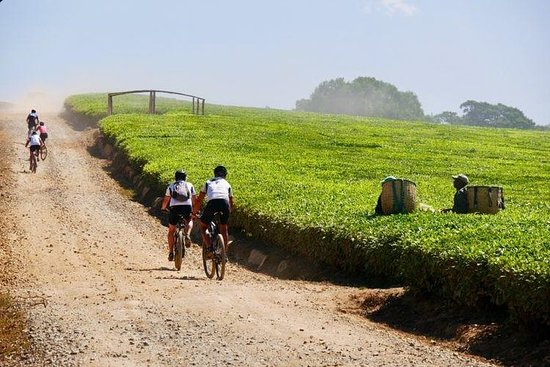 8 Days Africa Biking Tour