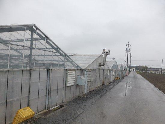 Washino Farm