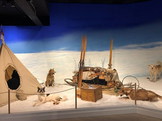 Morgedal, Norge: From the exhibition about the South Pole Race.