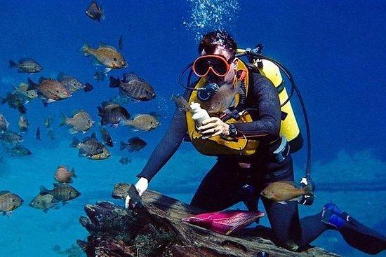 Scuba diving + Water sports ( 5...