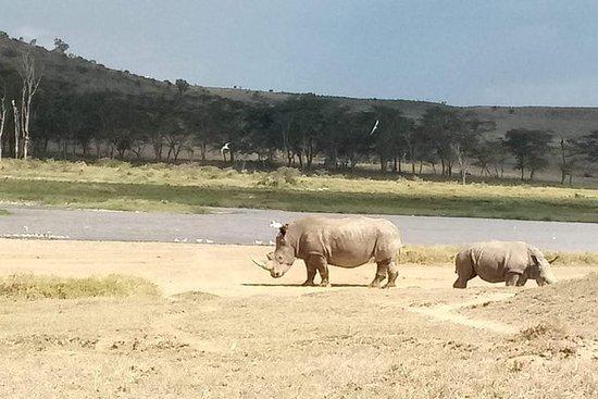 14-Day Maasai Mara Serengeti...