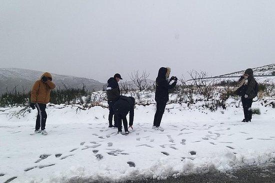Experiência de neve na Serra da...