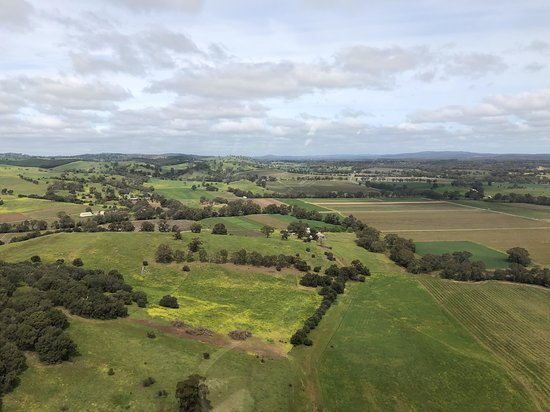 Southern Barossa: 10-Minute Helicopter Flight: Amazing view from the top view!