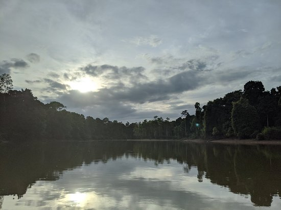 Kota Kinabatangan Photo