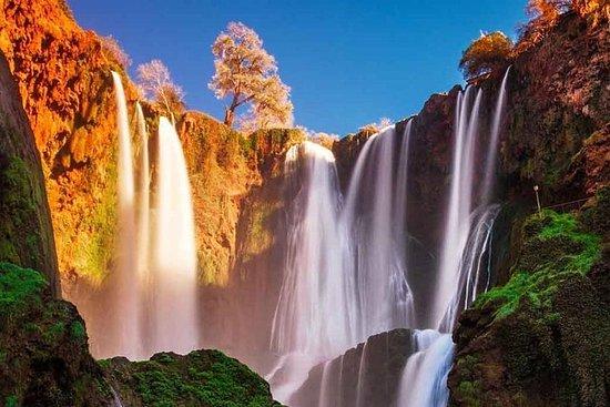 Ouzoud Falls heldagstur fra Marrakech...