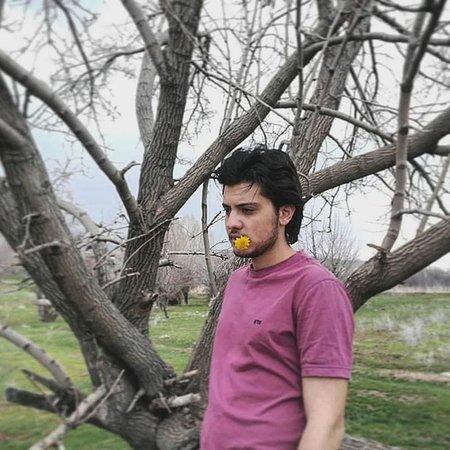 Taleqan Nature
