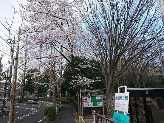 Miyamadai Park