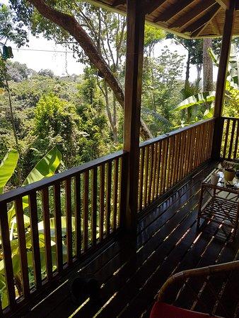 Playa Tortuga, Costa Rica: überall Dschungel