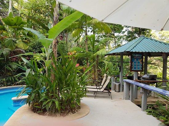 Playa Tortuga, Costa Rica: wunderschöner Pool