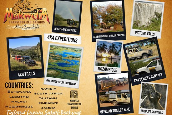 Makwela Transfrontier Safaris
