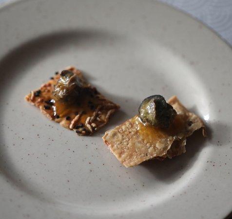 L'escargot des pres