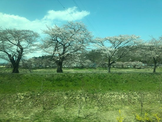Ogawara-machi – fénykép