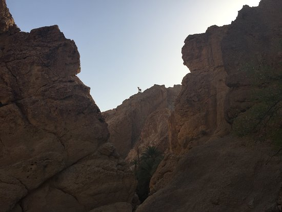Shabikah, Tunisia: view from the gorge