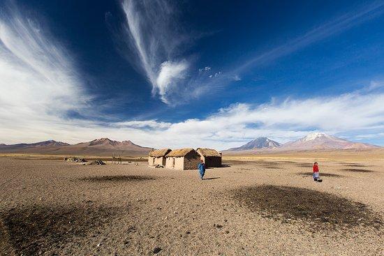 Sajama National Park, Bolívia: Sajama park