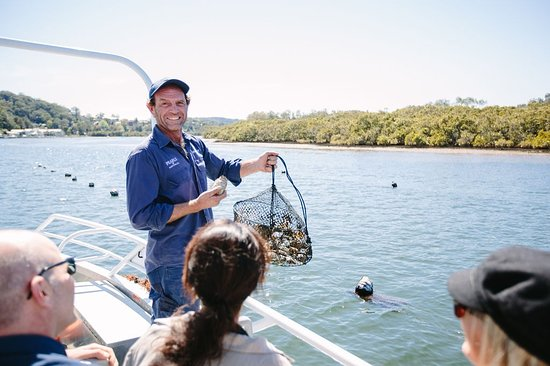 Pearls of Australia - Broken Bay Pearl Farm
