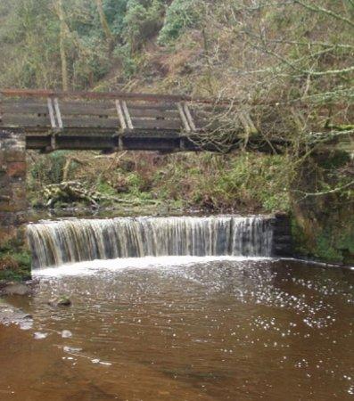 Lochwinnoch, UK: Calderglen waterfalls