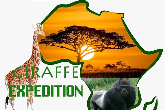 Giraffe Expeditions