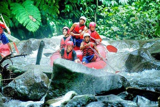 Ayung Rafting - Quad Bike - Bali Spa...