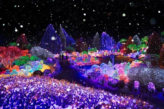 Gapyeong-gun, كوريا الجنوبية: 겨울, 오색별빛정원전, 하경정원