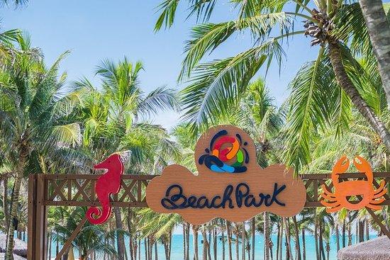 海滩公园之旅