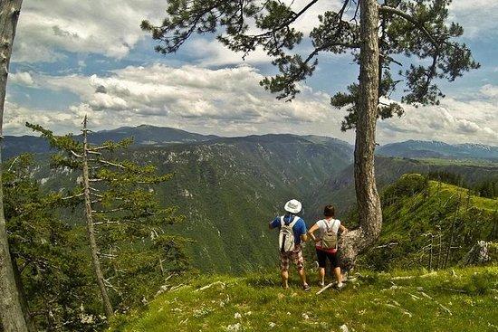 Hiking Sokolina Peak in Montenegro