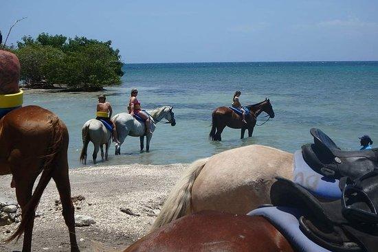 Natation à cheval N et rafting en bambou depuis Ocho Rios, Montego...