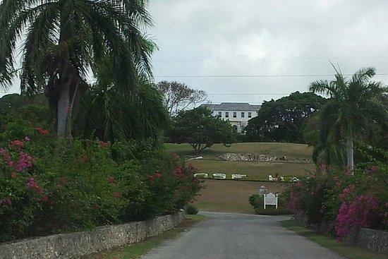 Rosehall Great House and Montego Bay...