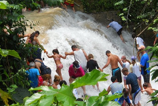 Blue Hole and Dunn's River Falls from...