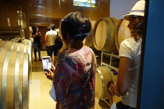 Wine Tour Privado - Colonia Caroya