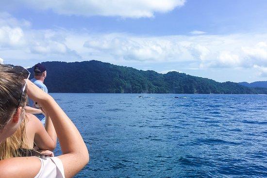 OutStanding Costa Rica