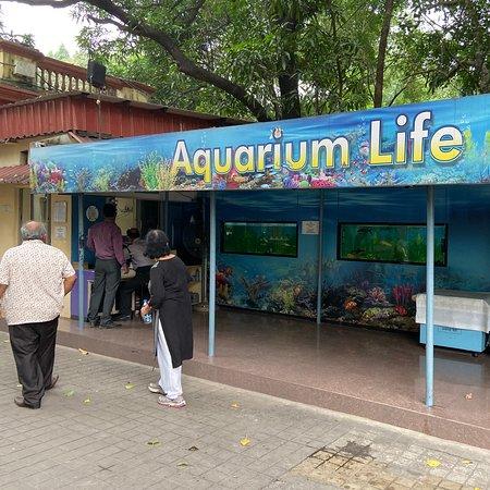 Digital Adventure & Aquarium Life