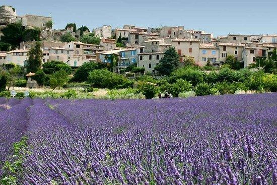 Tour Nr. 6: Provence und Traditionen